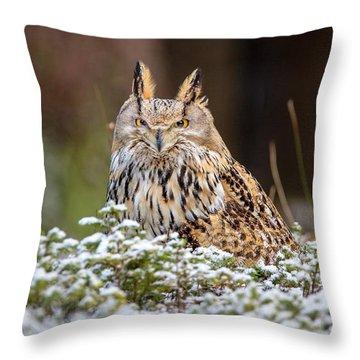 Western Siberian Owl Throw Pillow