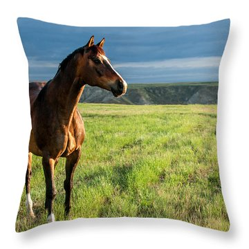 Western Stallion Throw Pillow