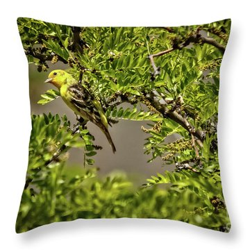 Western Tanager Throw Pillow by Robert Bales