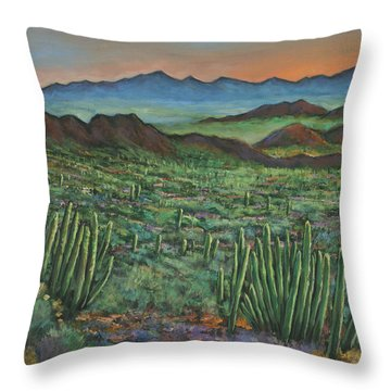 Westward Throw Pillow by Johnathan Harris