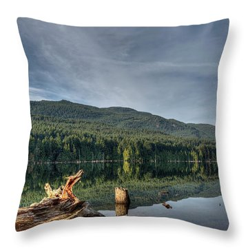 Throw Pillow featuring the photograph Westwood Lake by Randy Hall