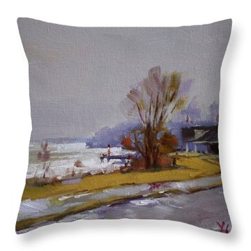 Wet And Icy At Gratwick Waterfront Park Throw Pillow