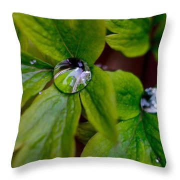Wet Bleeding Heart Leaves Throw Pillow