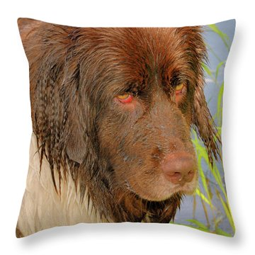 Throw Pillow featuring the photograph Wet Newfie by Debbie Stahre