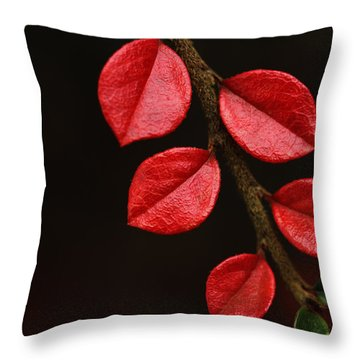 Wet Scarlet Throw Pillow