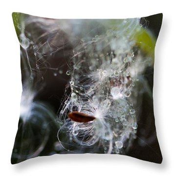 Wet Seed Throw Pillow