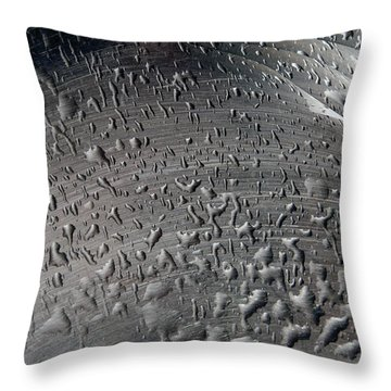Wet Steel Throw Pillow by Keith Armstrong