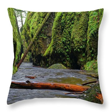 Throw Pillow featuring the photograph Wet Trail by Jonathan Davison