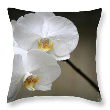 Wet White Orchids Throw Pillow