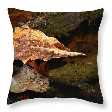 Wetland Spring 042918 Throw Pillow