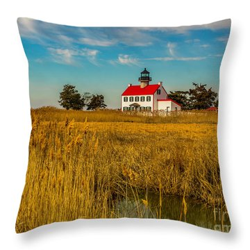 Throw Pillow featuring the photograph Wetlands At East Point Light by Nick Zelinsky