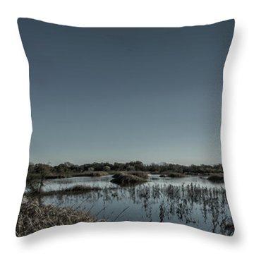 Wetlands Desaturated  Throw Pillow