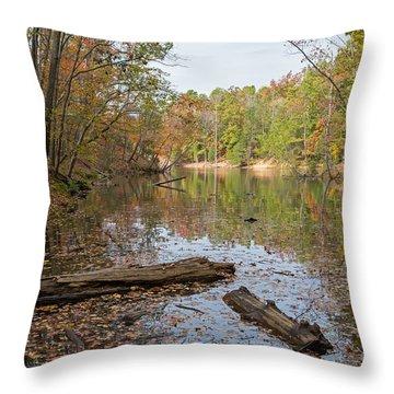 Wetlands In Autumn Throw Pillow