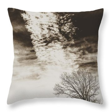 Wetlands Meet Chemtrails Throw Pillow