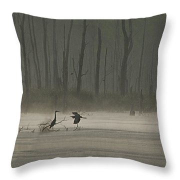 Wetlands Morning Throw Pillow by Richard Engelbrecht