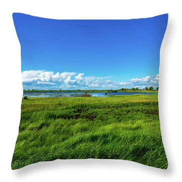 Wetlands On A Windy Spring Day Throw Pillow