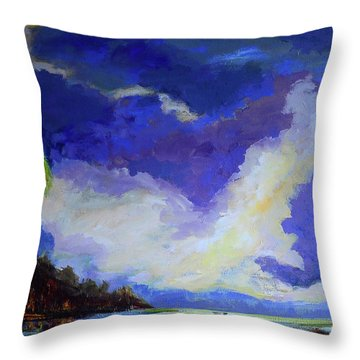 Wetlands Sky  Throw Pillow
