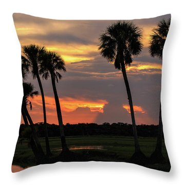 Wetlands Sunset Throw Pillow