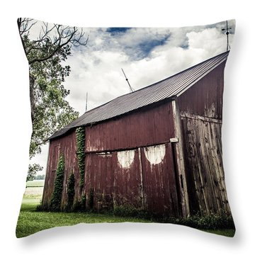 We've Been Here Awhile  Throw Pillow by Off The Beaten Path Photography - Andrew Alexander