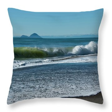 Throw Pillow featuring the photograph Whale Island by Werner Padarin