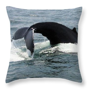 Whale Of A Tail Throw Pillow