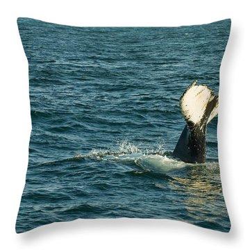 Whale Throw Pillow by Sebastian Musial