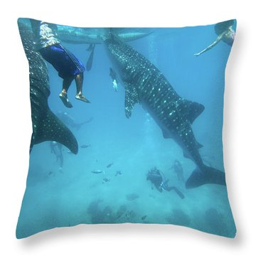 Whale Sharks Throw Pillow by Tim Fitzharris