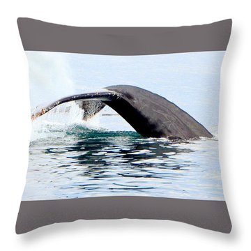 Whale Watch Moss Landing Series 24 Throw Pillow