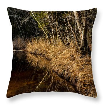 Wharton Forest Fall Throw Pillow