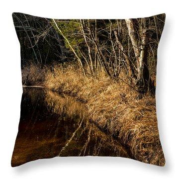 Wharton Forest Fall Throw Pillow