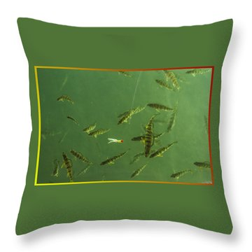 What A Line Throw Pillow