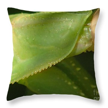 What Am I? #1 Throw Pillow