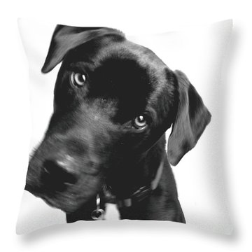What Throw Pillow by Amanda Barcon
