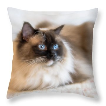 What Does She See Throw Pillow