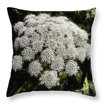 Throw Pillow featuring the photograph What Flower Is This? I Think It's by Mr Photojimsf