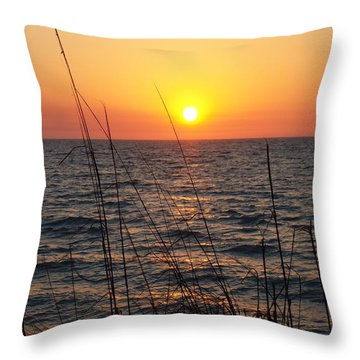 Throw Pillow featuring the photograph What God Gave To Adam by Robert Margetts