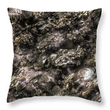 What I See Not, I Better See Throw Pillow by Danica Radman
