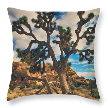 What I Wouldn't Give Throw Pillow
