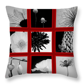 What Is Black And White And Red All Over  Throw Pillow by Lisa Knechtel