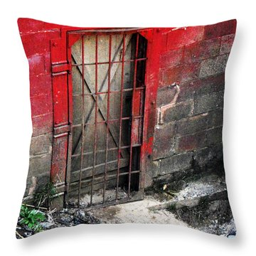 What Lies Behind The Door Throw Pillow