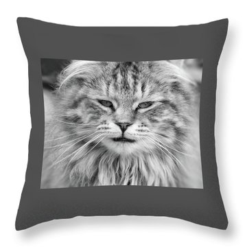 What Mouse Throw Pillow