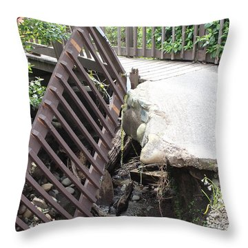 Throw Pillow featuring the photograph What Storms Can Do by Marie Neder