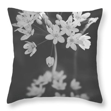 What The Heart Wants Throw Pillow