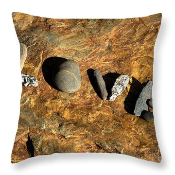 What The World Needs More Of Throw Pillow