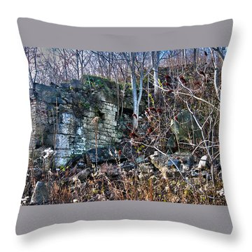 What Was Here? Throw Pillow