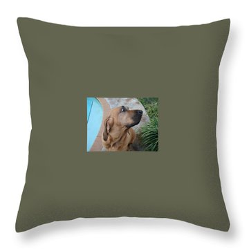 What Was That Throw Pillow by Val Oconnor