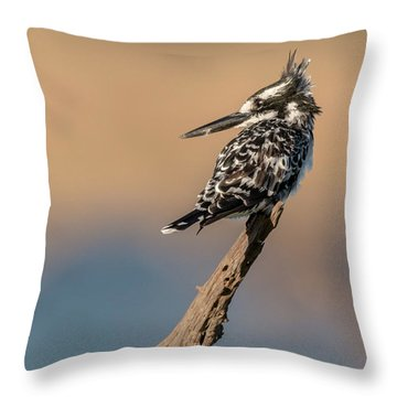What Was That You Said Throw Pillow