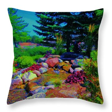 What A Day For A Daydream  Throw Pillow