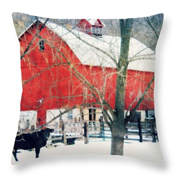 Throw Pillow featuring the photograph Whatcha Looking At by Julie Hamilton