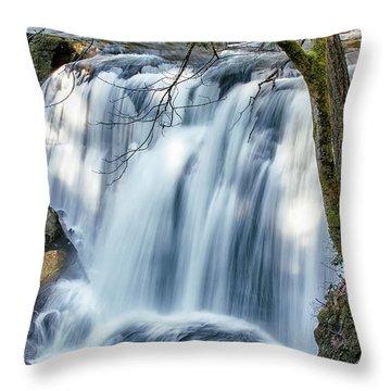 Whatcom Falls Throw Pillow
